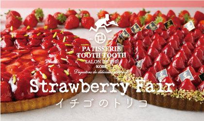 真っ赤な果実のスイーツが勢ぞろい♪ストロベリーフェア「イチゴのトリコ」<br><br>/PATISSERIE TOOTH TOOTH