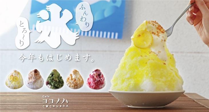 """ココノハから""""ふんわりとろ~り""""かき氷が登場!"""